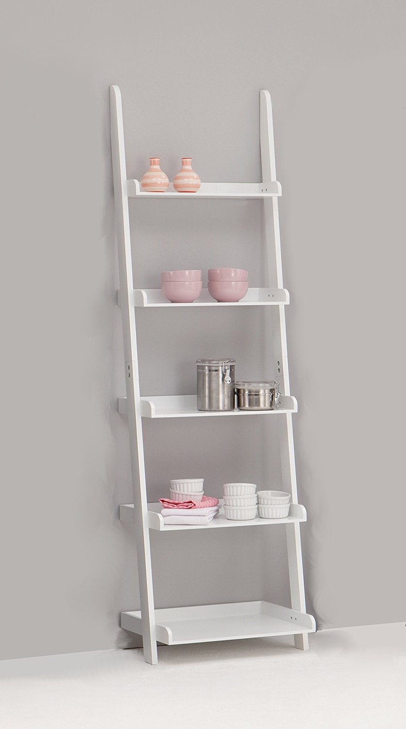 Nice Bookcase Ladder